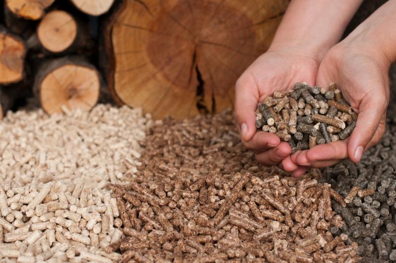 Apparecchi a biomassa legnosa