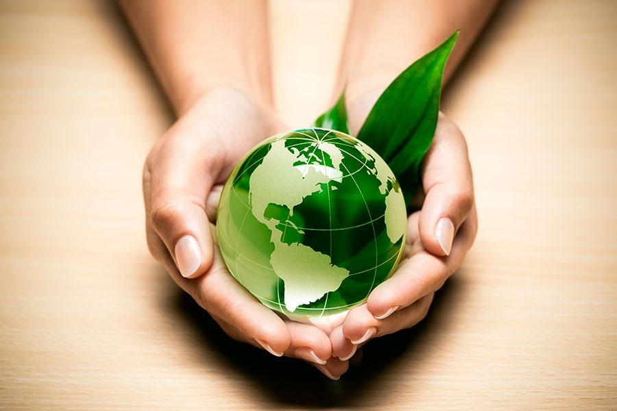 Il sogno di un mondo più pulito sta diventando realtà